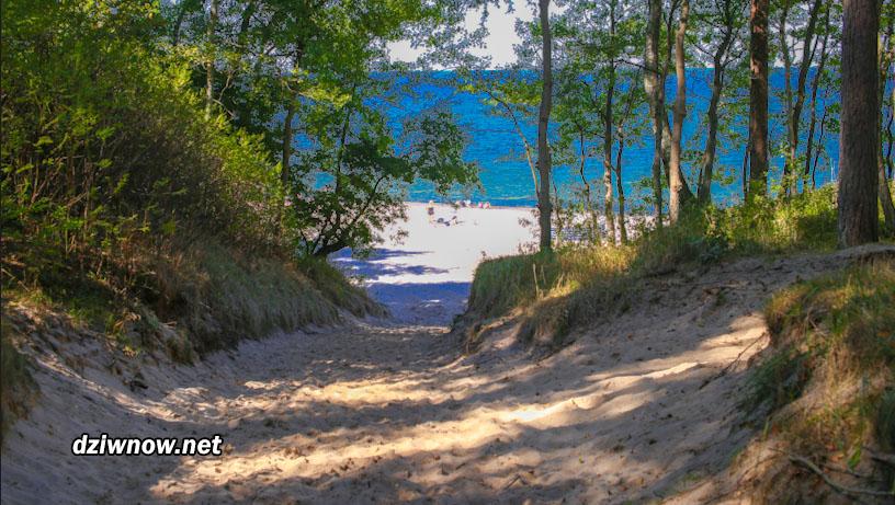 Droga na plażę w Łukęcnie